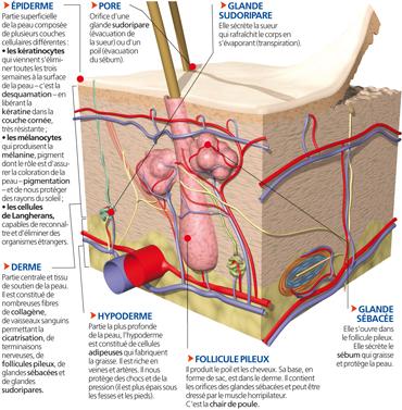 Les taches de pigment léloignement par le cosmétologue